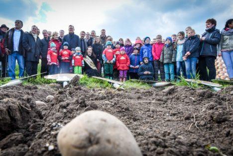 Kartoffellegen mit Kindern und Prominenten 2016