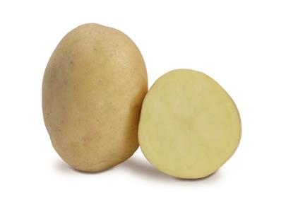 Melody-Teilnehmerin zur Thüringer Kartoffel des Jahres 2016