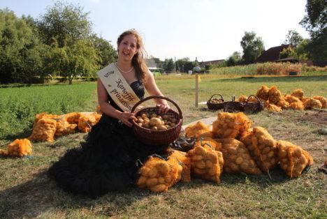 Kartoffelprinzessin Manuela I zur Kartoffelernte in Heichelheim
