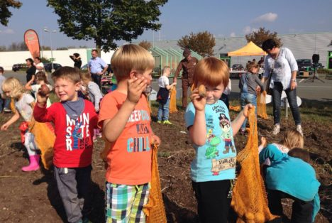 Kids an die Knolle in Mittelhausen