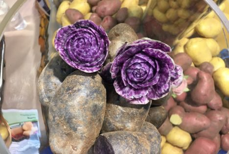 kunstvolles-gemueseschnitzen-aus-kartoffeln-zur-ika-2016